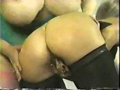 spanking kitten
