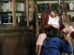 the enjoyable librarian