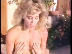 ginger lynn has sex poolside
